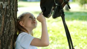 Girl teenager jockey sits in a green clearing under a tree. Feeds a horse an apple and strokes it. Love for horses stock video footage