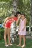 Girl Telling A Joke. Girl whispering a secret joke to sisters ear and she making a funny face Stock Image