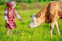 Girl tending cows Stock Photos