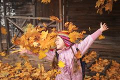 Girl throws maple leaves. autumn fun. child playing in leaf fall. stock photo
