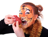 Girl tiger with the piece of raw meat. Royalty Free Stock Photography
