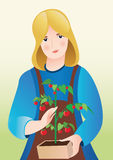 Girl with tomatoes. Illustration of girl with tomatoes Stock Image