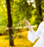 Girl touching tree Stock Photos