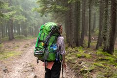 The girl tourist with backpack is hiking in the forest. stock photo