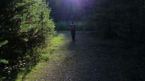 Girl, tourist with a backpack walking in the forest. Beautiful magic light stock video