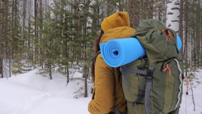 Girl tourist goes on a winter forest road with a backpack on her shoulders. stock video