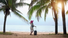 Girl tourist with luggage stands under palm. Trees on the beach and looks at the sea stock video footage
