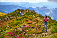 Girl tourist in mountains with a backpack Stock Image