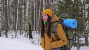 Girl tourist goes on a winter forest road with a backpack on her shoulders. stock video footage