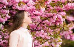 Girl tourist posing near sakura. Tender bloom. Child on pink flowers of sakura tree background. Girl enjoying cherry royalty free stock photography