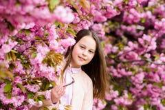 Girl tourist posing near sakura. Tender bloom. Child on pink flowers of sakura tree background. Girl enjoying cherry stock photo