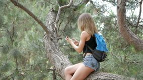 Girl tourist sits on a tree and takes a photo stock video
