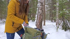 Girl tourist in the winter snow-covered forest gets a thermos from a backpack. stock video