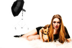 A girl and toy terrier Royalty Free Stock Images