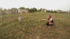 A girl in a traditional Ukrainian traditional national costume offers an apple to a gray goat in a field. Collection, a girl in a traditional Ukrainian folk stock video