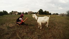 A girl in traditional Urainian traditional handmade clothes feeds a white goat apple in the garden against the backdrop of rural b. Collection, a girl in a stock footage
