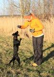 Girl training black dog Royalty Free Stock Photos