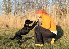 Girl training black dog Royalty Free Stock Photo