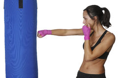 Girl training body combat Stock Photography