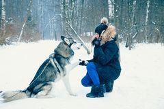 The girl is training the dog Stock Photo