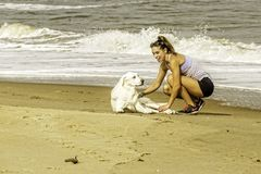 Girl Training Dog at Virginia Beach Ocean Front. Girl Training Dog on Sand at Virginia Beach Ocean Front Royalty Free Stock Image