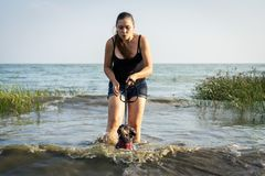 A girl is training a dog to go swimming. Training and agility dogs.  royalty free stock photo
