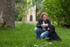 Girl training her dog Stock Photos