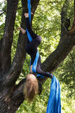 Girl training on silks on open air. Young gymnast doing exercise on aerial silks Stock Image