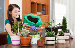 Girl transplanting plant in flowerpot. Happy girl transplanting plant in flowerpot at home stock photo