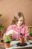 The girl transplants a pot with a flower. The girl in a plaid shirt in the hands of the land with heather ivy. Transplanting potte stock image