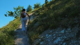 A girl traveler with a backpack and a wooden stick is walking along a path located on a steep slope in the mountains. She is surrounded by grass, bushes and a stock video footage