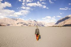 Girl hiking through a desert surrounded by beautiful mountains.. Girl traveler hiking in Nubra valley, India. High altitude desert surrounded by mountains stock photos