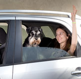Girl traveling with dog in car stock photos