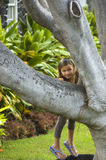 Girl by the tree. Stock Images
