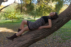 The girl on a tree Stock Image