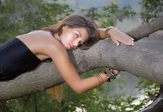 Girl on the tree Royalty Free Stock Image