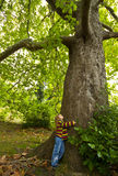 Girl and tree Stock Image