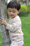 Girl and tree. Chinese girl hug a tree   in garden Royalty Free Stock Images