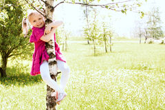 Girl on the tree Stock Photo