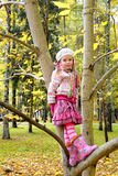 Girl on a tree Royalty Free Stock Images