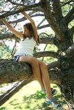 Girl in tree Stock Photography