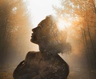 Girl with tree inside. Concept of autumn. Double exposure stock photos