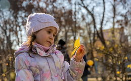 Girl with tree leaf. Royalty Free Stock Photos