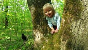 Girl on tree stock video