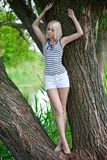 The girl on a tree at the river. The beautiful barefoot fair-haired girl in shorts and a vest at a tree on the river Royalty Free Stock Image