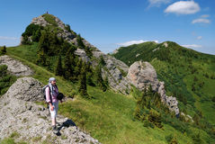 Girl trekking in Carpathian Mountains Royalty Free Stock Image