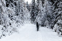 Girl trekking with snowshoes in the wood Royalty Free Stock Photo