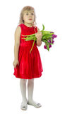 Girl with tulip. Stock Photography