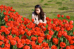 Girl in Tulips. A girl sitting next to hundreds of red tulips Royalty Free Stock Photography