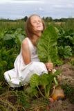 Girl at turnip Royalty Free Stock Photography